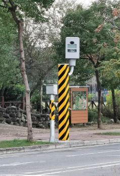 Flistpaal dashcam